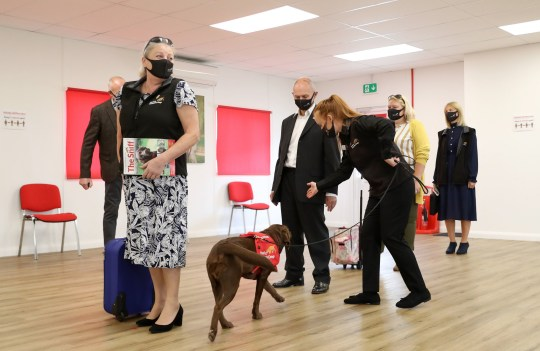 The team at the Medical Detection Dogs charity's training centre in Milton Keynes perform a demonstration for the Duchess of Cornwall.