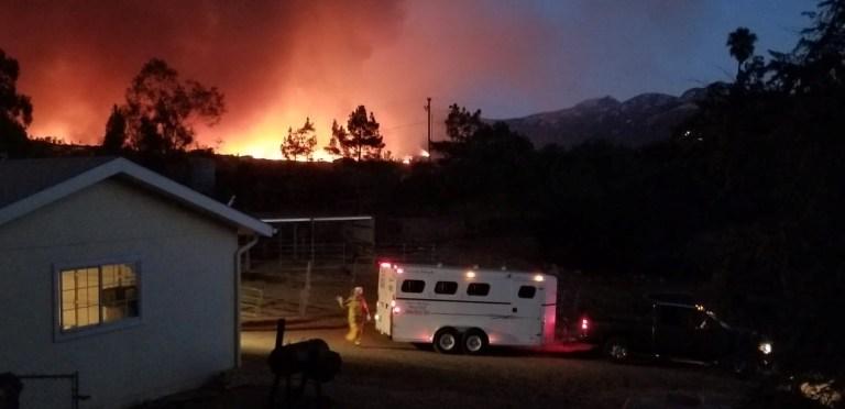 L'équipe d'intervention d'urgence de la San Diego Humane Society sauve deux chevaux au milieu de l'incendie de la vallée dans le comté de San Diego, Californie, États-Unis.