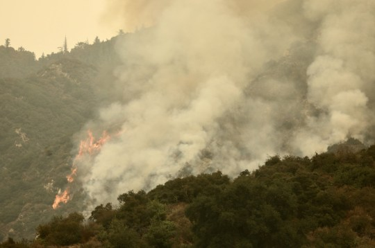 Crédit obligatoire: Photo de Xinhua / REX (10773192a) Un feu de forêt est vu dans la forêt nationale d'Angeles, Monrovia, Los Angeles, États-Unis, le 10 septembre 2020. Les incendies de forêt ont brûlé un record de 3,1 millions d'acres (12525 km2) de terres en l'Etat américain de Californie depuis août, ont annoncé jeudi les autorités.  us California Wildfire - 10 sept.2020