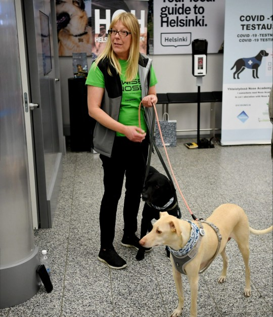 Trainer Susanna Paavilainen is seen with Kossi and Miina, sniffer dogs being trained to detect the coronavirus from the arriving passengers' samples, at Helsinki Airport in Vantaa, Finland September 22, 2020. Lehtikuva/via REUTERS ATTENTION EDITORS - THIS IMAGE WAS PROVIDED BY A THIRD PARTY. NO THIRD PARTY SALES. NOT FOR USE BY REUTERS THIRD PARTY DISTRIBUTORS. FINLAND OUT. NO COMMERCIAL OR EDITORIAL SALES IN FINLAND.