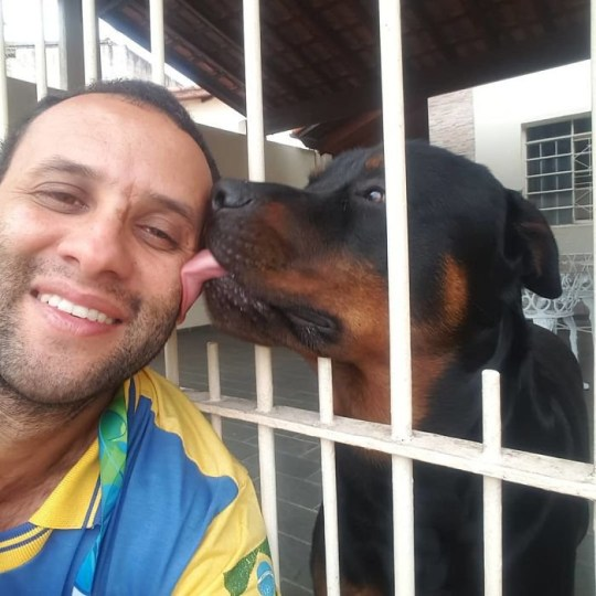 Mailman makes friends with every animal he meets on the job