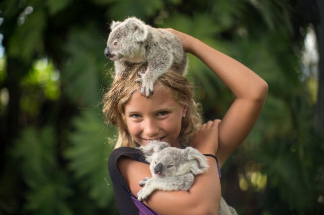 Television programme : Dodo heroes. Izzie (Izzy) holding two koalas smiling at the camera.