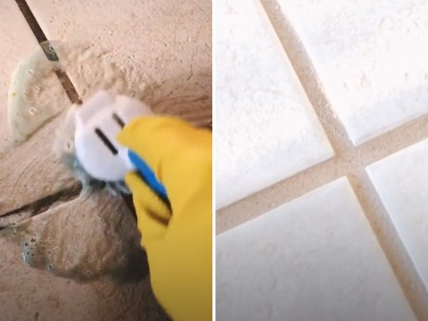 Woman transforms tile grout from black to white in minutes with toilet cleaner