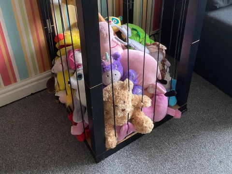 Thrifty mum shares excellent toy box hack to keep the house tidy