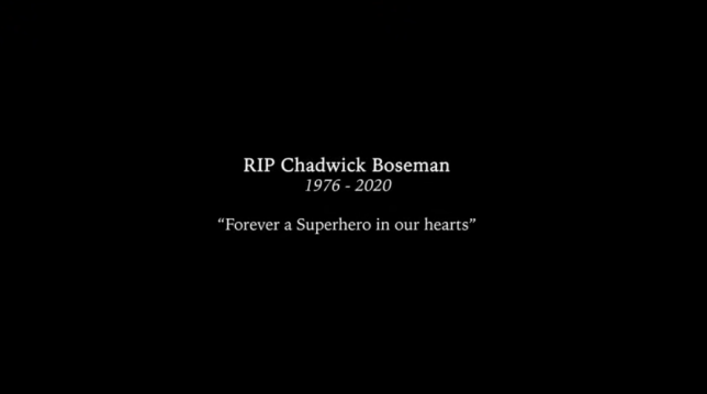 Chadwick Boseman tribute in Stormzy's Superheroes.