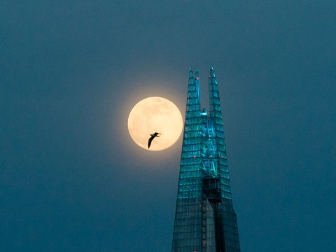 When was the last time there was a full moon on Halloween and what is the meaning of a Blue Moon?