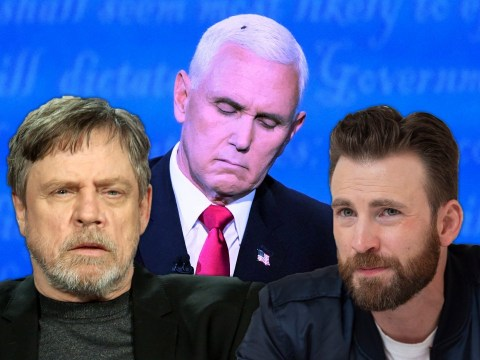 Chris Evans and Mark Hamill lead hilarious celebrity reactions to Mike Pence's fly hair during Vice Presidential debate
