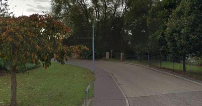 Girl's body found in Essex woodland