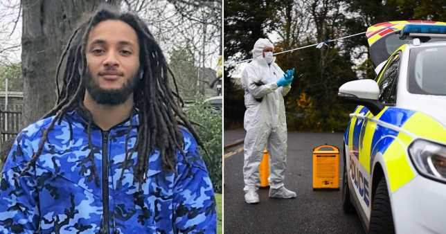 Nimroy Hendricks (pictured) was stabbed to death in Crawley