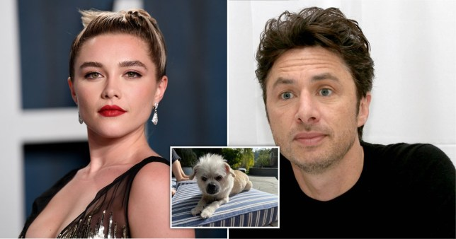 Florence Pugh and Zach Braff mourn their dog
