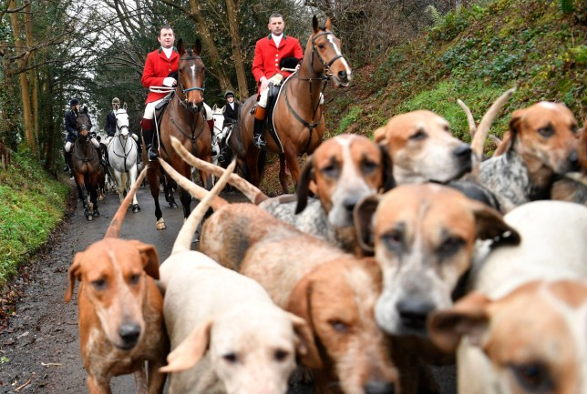 Mandatory Credit: Photo by NEIL HALL/EPA-EFE/REX (10513109ag) Participants in the Old Surrey and West Kent Boxing Day Hunt in Chiddingstone, Britain, 26 December 2019. Hunting with horses and hounds is a Boxing Day tradition. Since the fox hunting ban in 2004, modified hunts take place using scented trails for the animals to follow. Boxing Day Hunt, Chiddingstone, United Kingdom - 26 Dec 2019