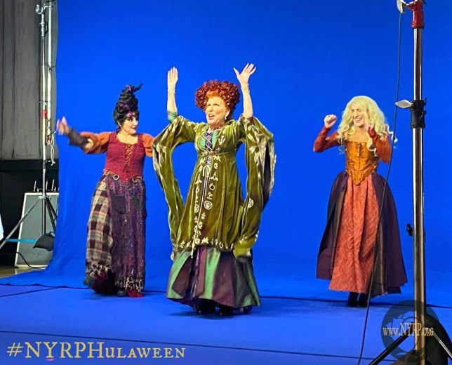 Bette Midler shares pic from upcoming Hocus Pocus reunion and permission to freak out pls pics: Rex/Bette Midler/Instagram