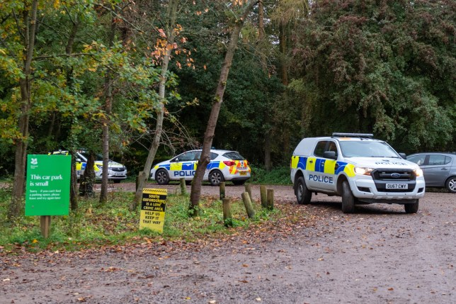 Police cars at the  Watlington Hill estate
