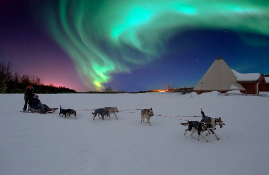 Sled team arrive back at camp with Northern Lights