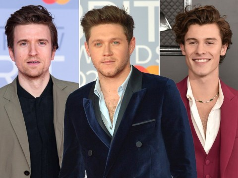 Niall Horan sends Greg James 'jealous' texts after radio host bonds with Shawn Mendes over haircare