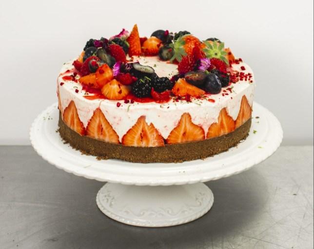 The pleesecake cheesecake