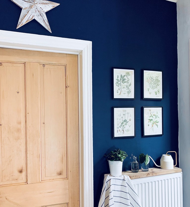 What I Rent: Vikki, £625 for a two-bedroom flat in Derby - a door with navy blue painted walls and drawings of foliage