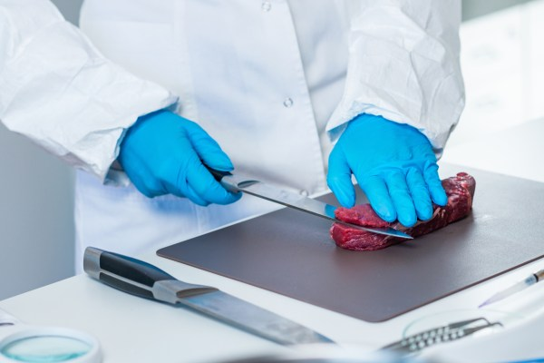 Midsection Of Scientist Cutting Meat On Table