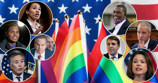 A record number of LGBTQ representatives have been elected to the US Congress