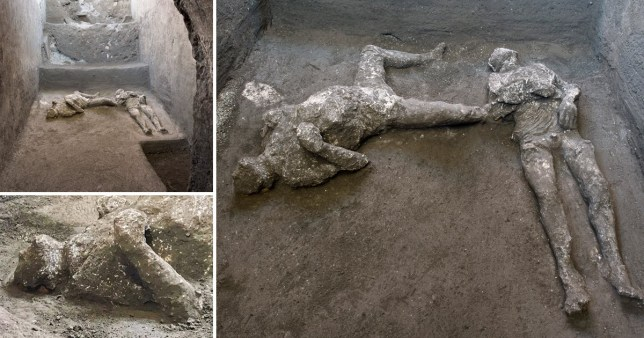 Composite image of bodies unearthed at Pompeii