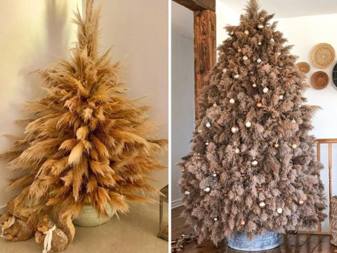 Christmas trees made of dried pampas grass are the next big interiors trend