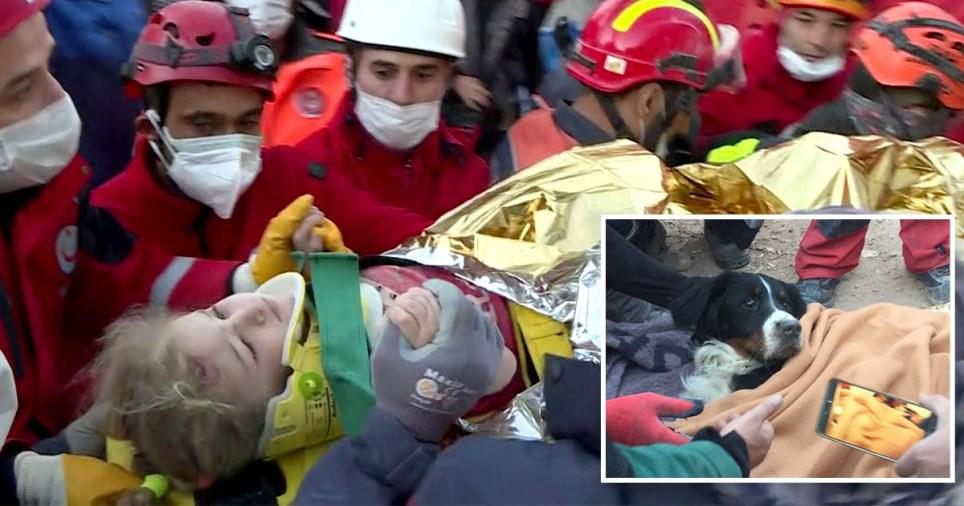 Image: Getty 3 ans et son chien sauvés après 65 heures sous les décombres après le tremblement de terre d'Izmir