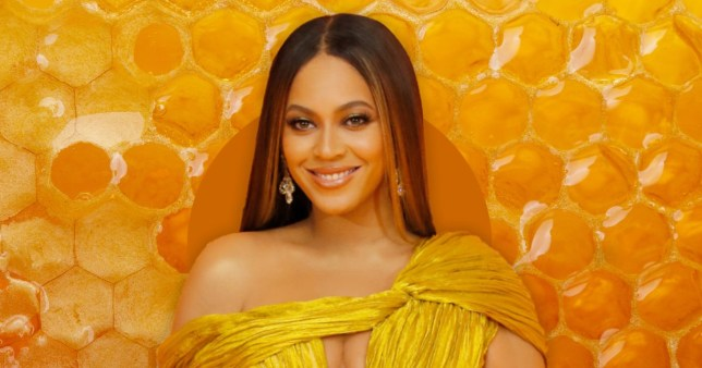Beyonce is a beekeeper now! Pics: Getty