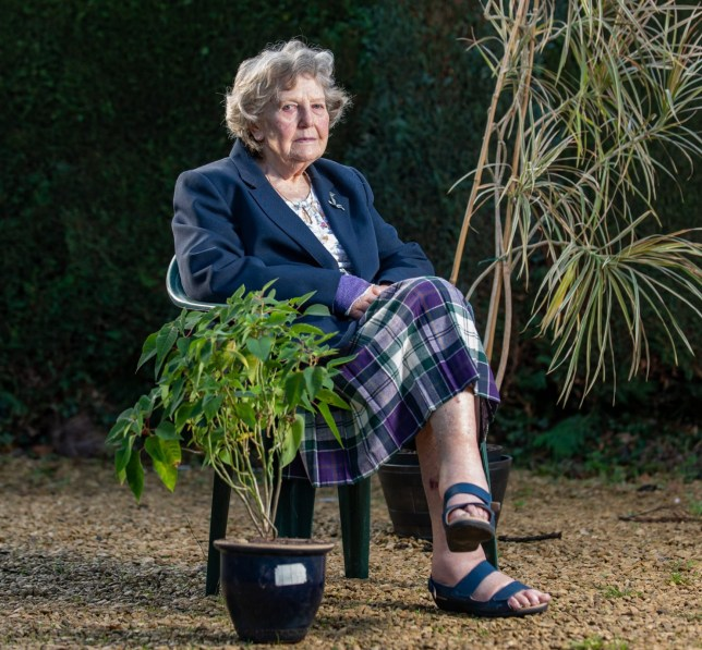 Rosemary Frank, 91, with pot plants at her home in Kempsey, Worcestershire, November 10, 2020. A gran who was hours from death after spending two days trapped on the floor of her home following a fall has told how she survived - by eating her POT PLANT. See SWNS story SWMDplant. Rosemary Frank, 91, managed to stay alive by eating soil from her Madagascan Dragon Tree after she was left stranded on her bedroom floor for 48 hours. Doctors told her she was only six more hours from death before she was saved by a volunteer driver who found her at her home in Kempsey, Worcs., on October 13. Derek Cowdry, who works for community transport service Worcester Wheels, said he decided to check on Rosemary after she missed her regular trip to the hair salon. He discovered her semi-conscious on the floor with soil around her mouth and dialled 999 before paramedics rushed her to Worcestershire Royal Hospital. Gran-of-two Rosemary was severely dehydrated and had fractured her wrist in three places and medics told Derek he had undoubtedly saved her life. Following a 10-day stay in hospital, she is now recovering at home with the help of carers and her 60-year-old son Richard. Retired physiotherapist Rosemary said she remembered waking up face down in a pile of dirt with soil around her mouth.