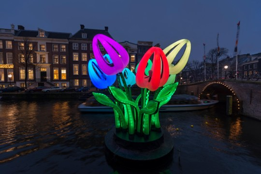 PWHXXD Amsterdam, canal Herengracht with lights and artwork Bunch of Tulips by Peter Koros during Amsterdam Light Festival in winter.