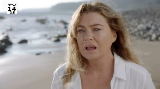 Grey's Anatomy gave fans a dream reunion in season 17 premiere and we cannot cope
