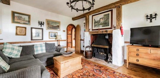 Thatched cottage with tigers as neighbours up for sale - living room