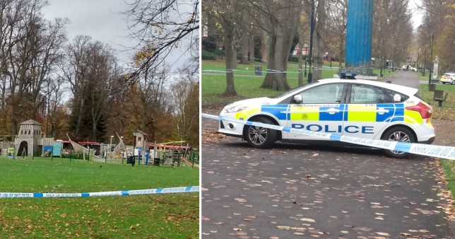 Hampshire Police are appealing for information from anyone who was in Houndwell Park when a teenage girl was attacked and raped.