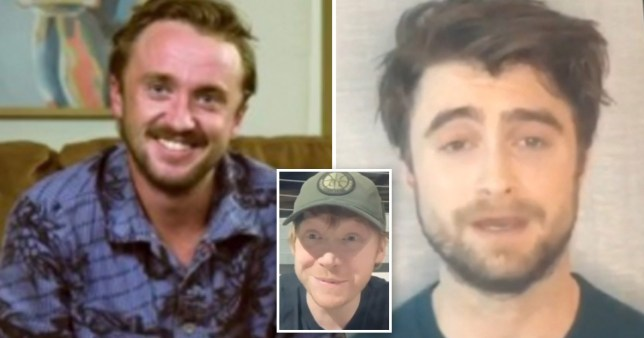 Daniel Radcliffe, Tom Felton and Rupert Grint