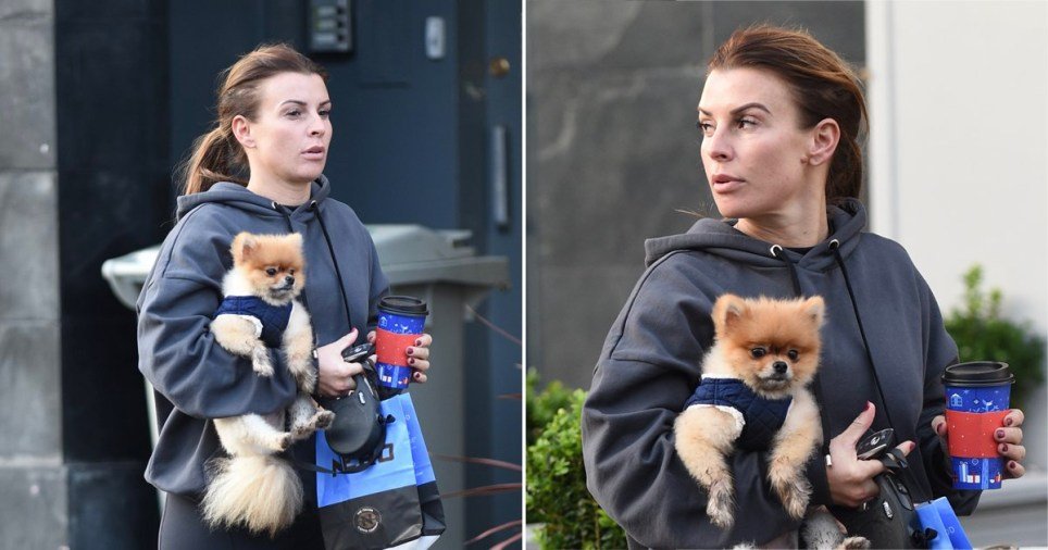 Coleen Rooney carrying her dog