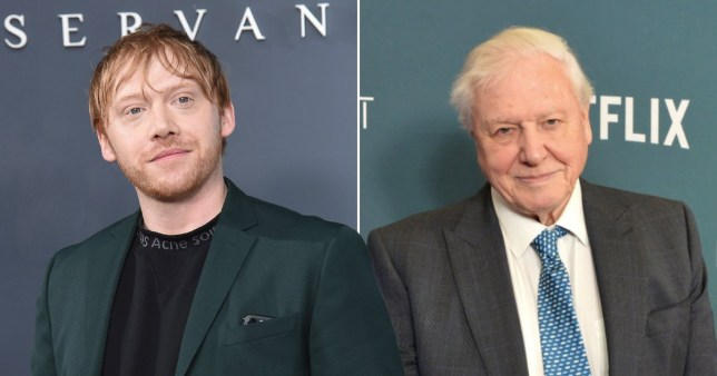 Rupert Grint pictured separately alongside Sir David Attenborough