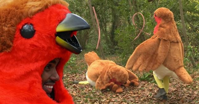 Mo Farah falls over dressed as a robin on I'm A Celebrity