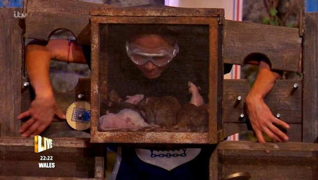 Live Bushtucker trial 20.11.20 (Picture: ITV)