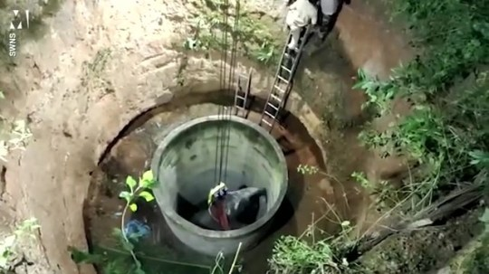 Un éléphant massif sauvé par une grue d'un puits en Inde Photos: SWNS