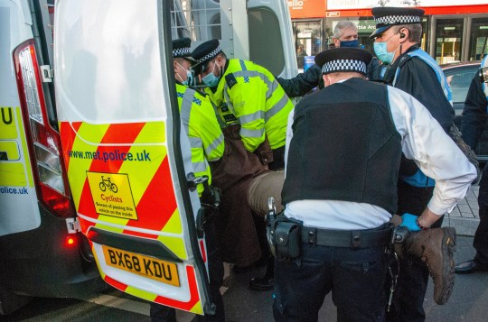 Mandatory Credit: Photo by Johnny Armstead/REX (11036155f) A 72 year old woman, anti-vaccine protestor is arrested outside the gate to the Houses of Parliament. Anti-vaccine protest, London, UK - 24 Nov 2020