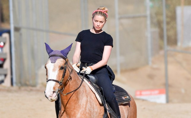 Amber Heard hugs it out with her girlfriend before heading out on a horseback ride. Amber looked etherial on a horse as she and a couple of friends, including her girlfriend, were seen riding the trails of Griffith Park. Amber seemed like a pro as she rode down steep trails and really seemed to have a handle of her horse. 28 Nov 2020 Pictured: Amber Heard. Photo credit: Snorlax / MEGA TheMegaAgency.com +1 888 505 6342