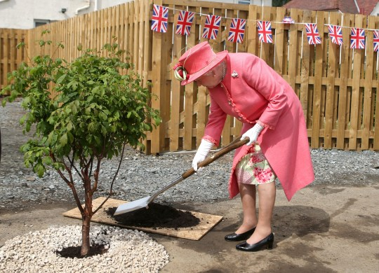 File photo dated 02/07/15 of Queen Elizabeth II planting a tree during a visit to Salvesen Gardens, a disabled veterans housing development in Edinburgh. People across the UK are to be invited to plant a tree for the Queen's Platinum Jubilee, to help mark the monarch's 70-year reign. PA Photo. Issue date: Sunday November 29, 2020. The tree-planting campaign, known as The Queen's Green Canopy, will launch next year ahead of the milestone in 2022. See PA story ROYAL Tree. Photo credit should read: Andrew Milligan/PA Wire