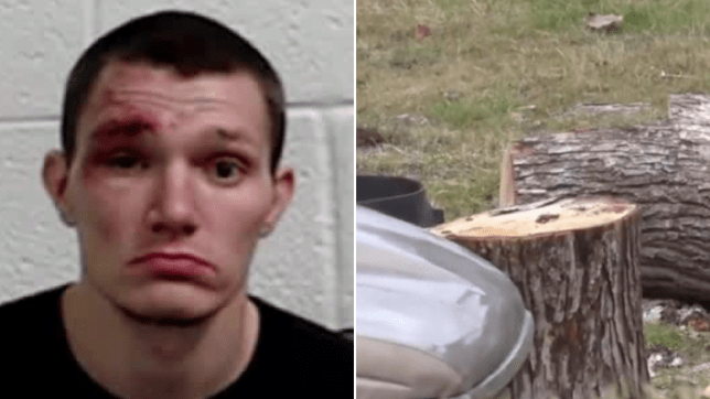 Puppy killer who bludgeoned dog to death jailed for 10 years 3