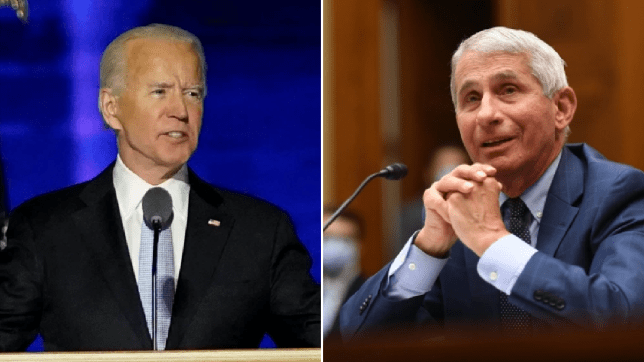 Fauci disagrees with Biden adviser calling for lockdown as US instances hit file