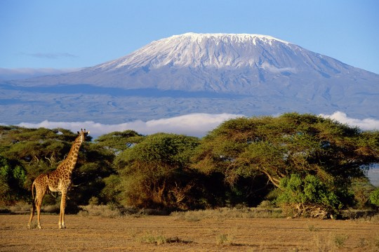 Mount Kilimanjaro in Tanzania. Daily Mail travel with Christopher Hudson. ftr-AE8164-001.jpg