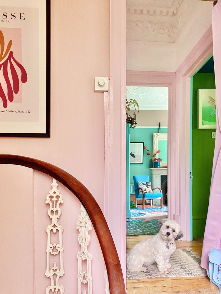 What I Rent: Anna, Crystal Palace - duffy the dog welcomes you in