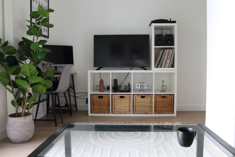 What I Rent: Kelsey, one-bedroom flat in Archway, London - faux fig leaf plant by TV and coffee table