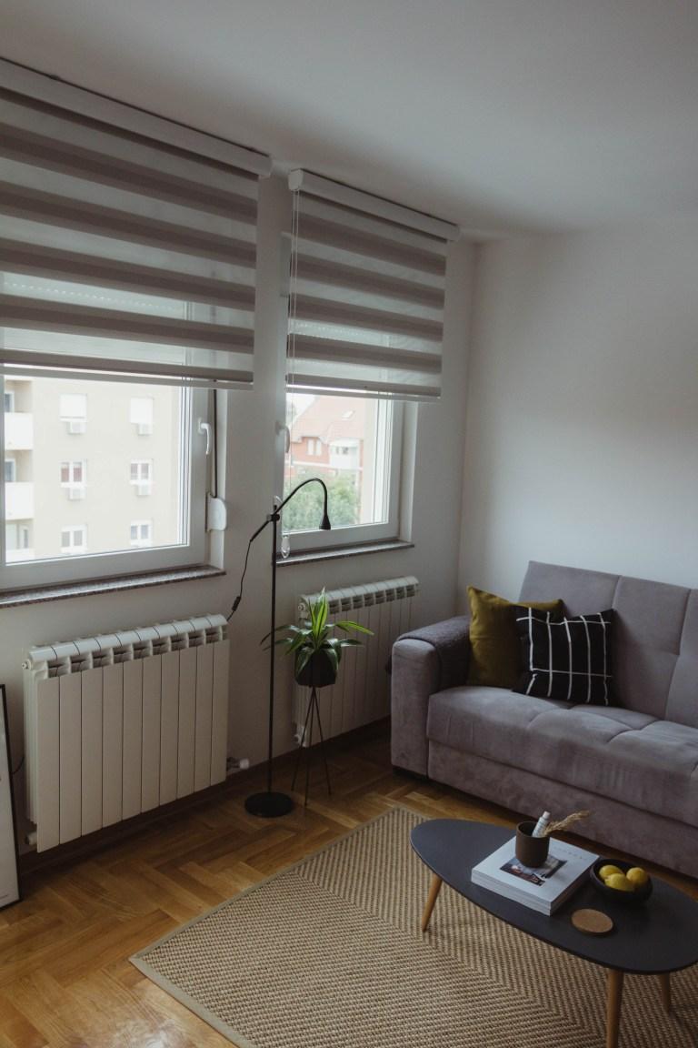 what i rent: Dario, Serbie: living room