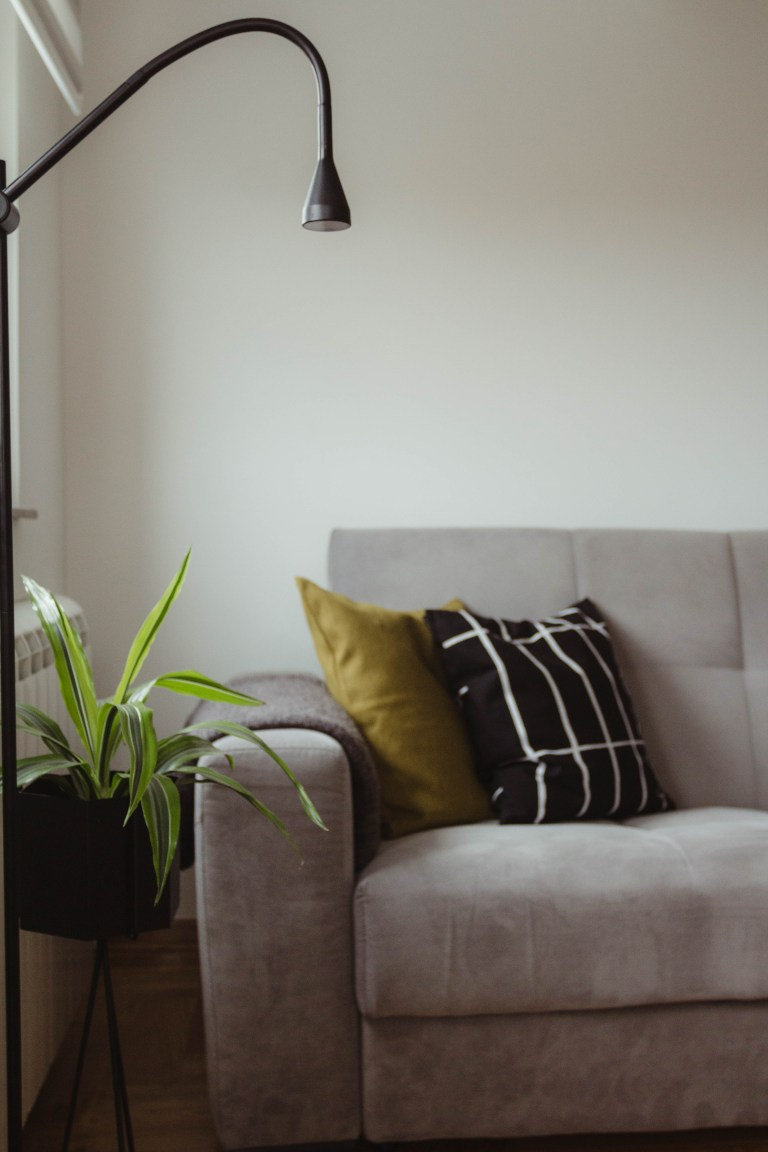 what I Rent: Dario, Belgrade, Serbia - sofa with cushions and a plant