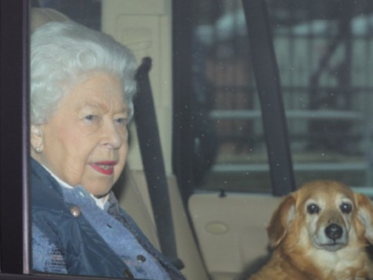 Queen with her dog