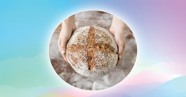 sourdough bread on a colourful background